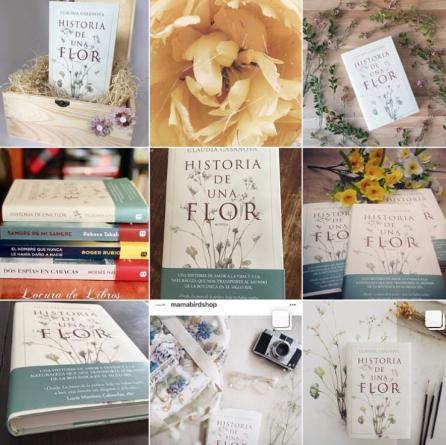 Historia de una flor. Claudia Casanova.